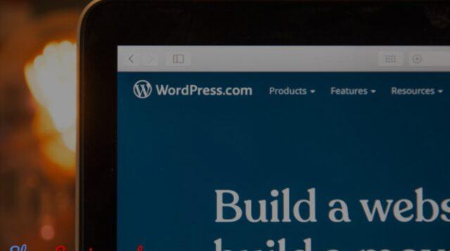 Review Di Wordpress